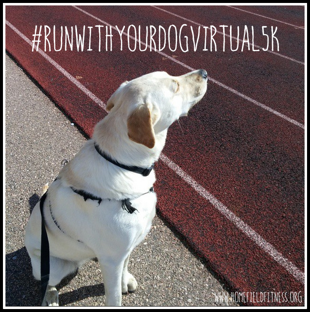 Oakley my running pup - dreaming of being an Olympic Track Star. #Runwithyourdogvirtual5K